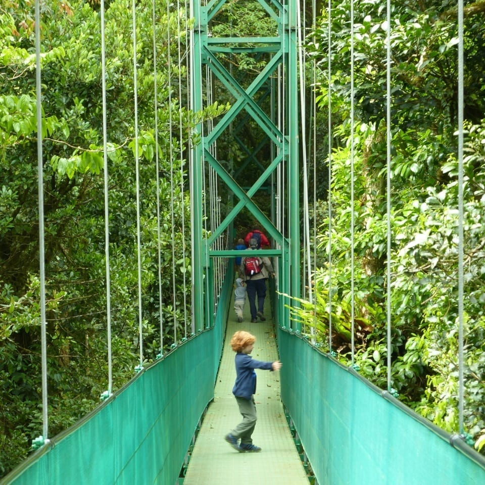 Costa Rica mit Kindern individuell - Monteverde-SkyWalk mit Kind with Kids