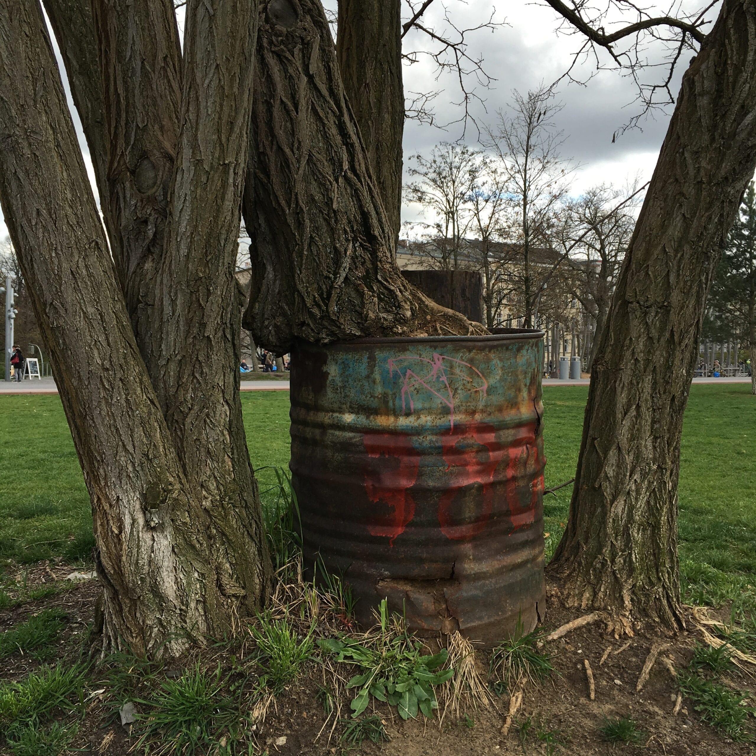 Berlin mit Kindern-Baum im Park am Gleisdreieck