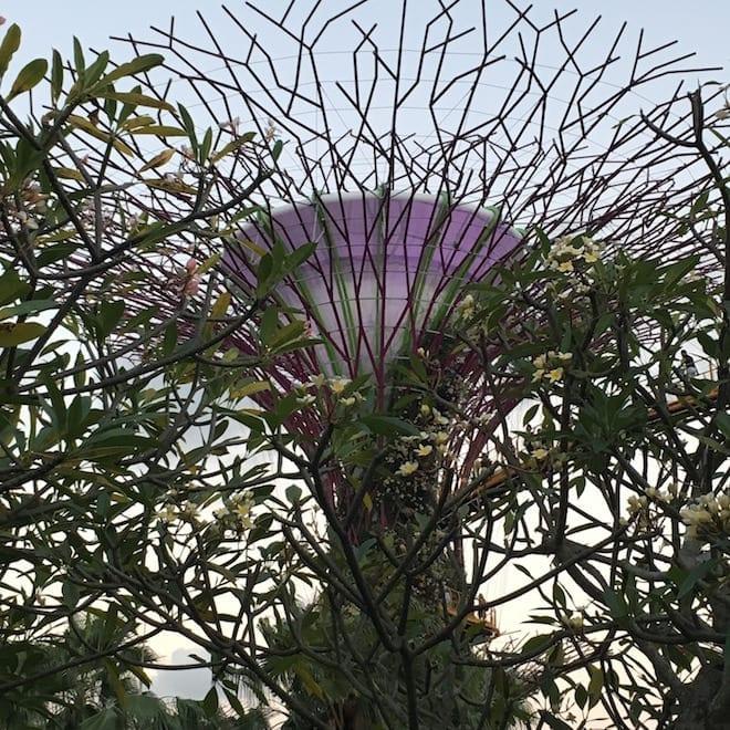 Gardens by the Bay-Singapur mit Kind
