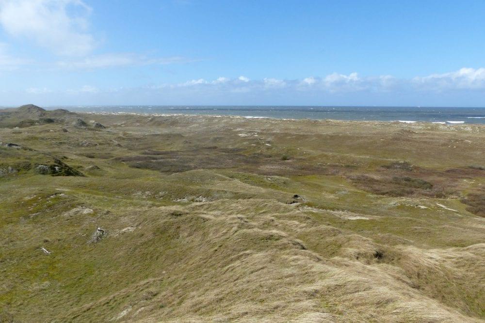 Norderney - nordische Weite