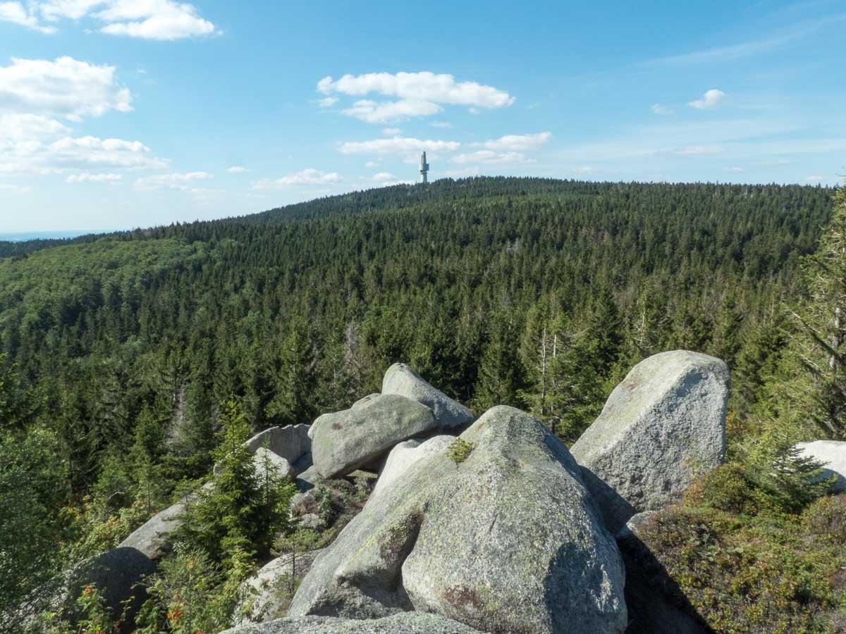 Ausblick vom Nußhardt-Gipfel zum Schneeberg beim Wandern im Fichtelgebirge