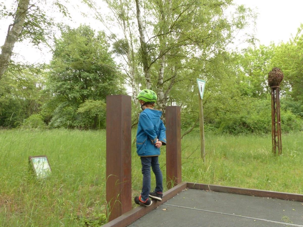 Natur-Park Südgelände Berlin mit Kindern - Naturschutzgebiet