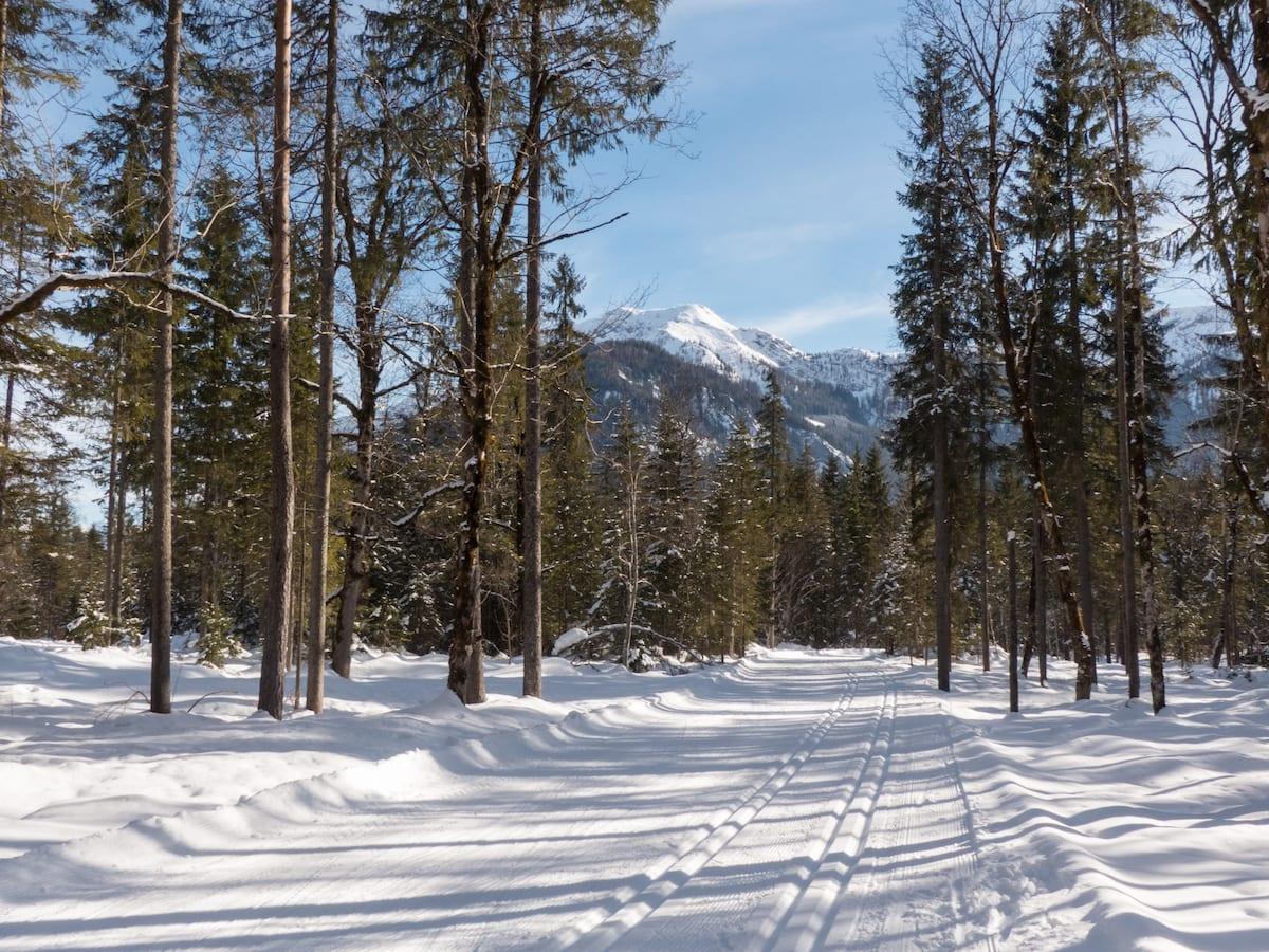 Langlauf und Wandern am Achensee im Winter - Karwendel ab Pertisau