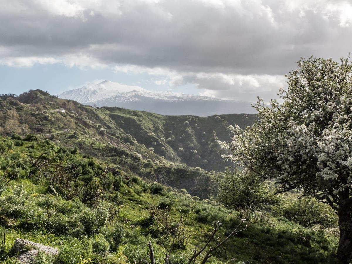 Reisefotos zur Fotoparade - Kategorie Landschaft Frühling