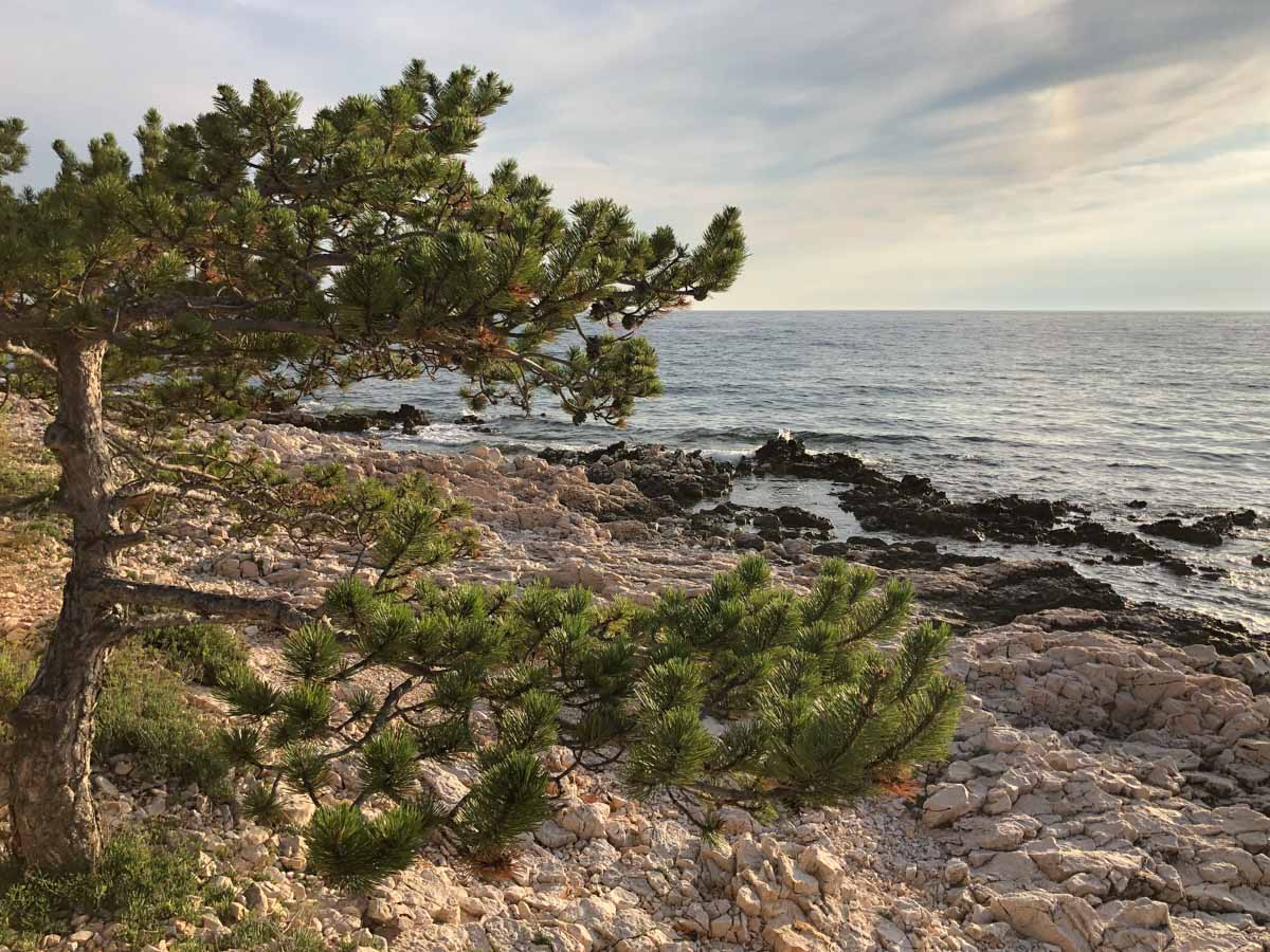 Balkan Roadtrip: Felsen-Küste auf der Insel Cres