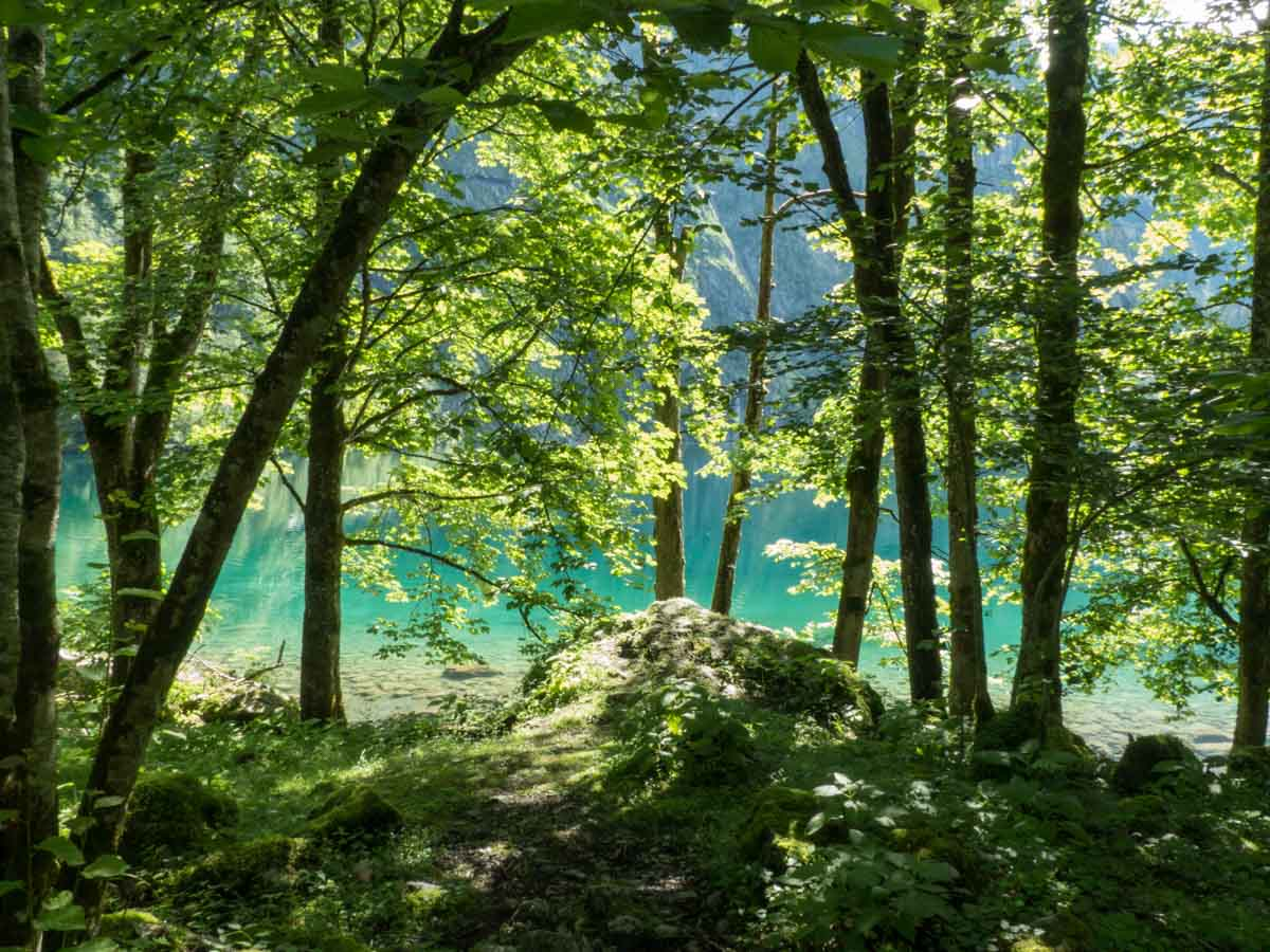 Nationalpark Berchtesgaden mit Bergsee